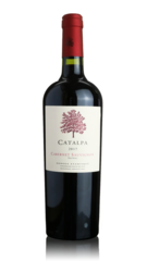 Bodega Atamisque 'Catalpa' Old Vines Cabernet Sauvignon 2017