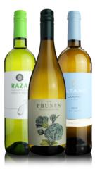 Portugal White Wine Snapshot Case