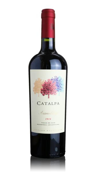 Bodega Atamisque 'Catalpa' Assemblage 2016