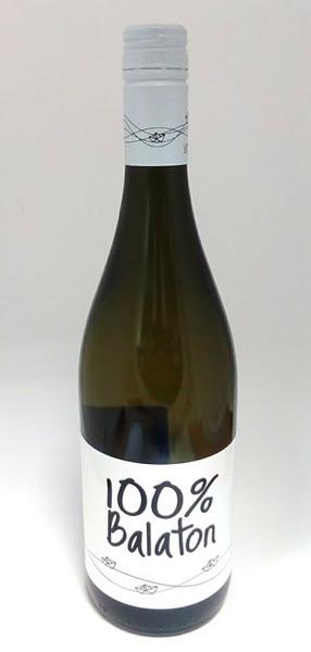 Homola 100% Balaton 2015