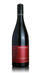 Sons of Eden Marschall Shiraz, Barossa Valley 2015